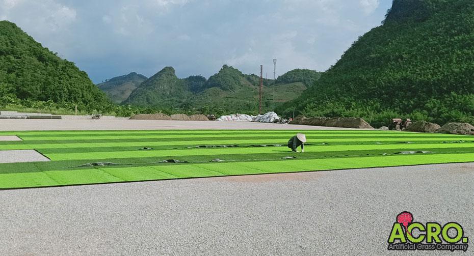 giá cỏ sân nhân tạo