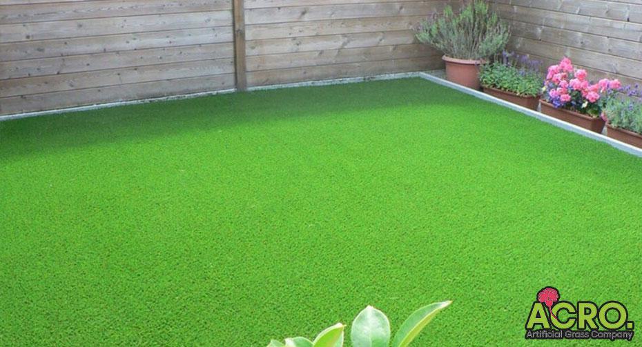 cỏ trải sân vườn