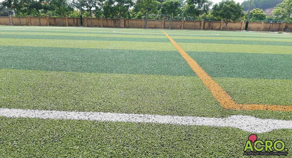 cỏ nhân tạo sân bóng giá rẻ