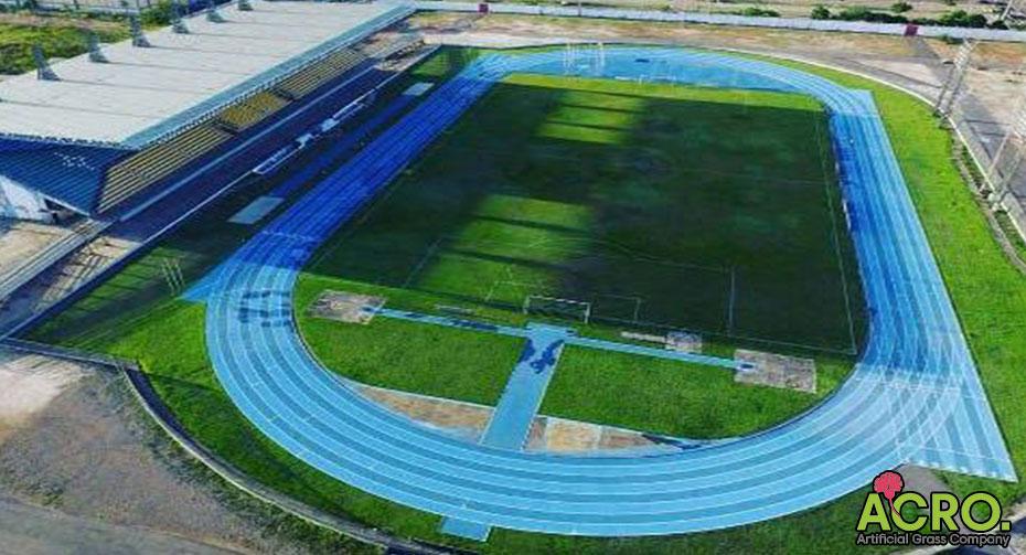 đầu tư sân cỏ nhân tạo